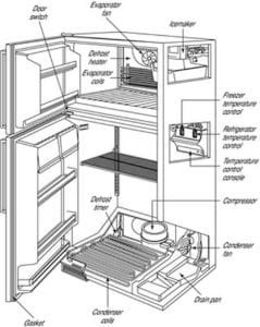 Maintain your fridge   freezer     Future Proof Property Inspections